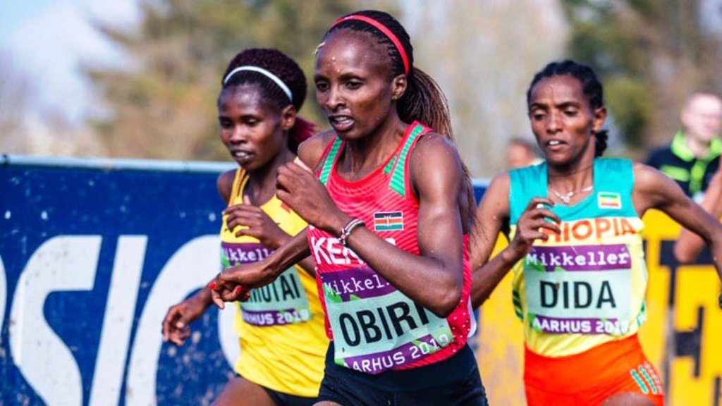 TOP: Helen Obiri adds senior women title at the World Cross Country Championships in Aarhus to her 3,000m indoor and 5,000m outdoor world titles. Above: Helen Obiri (centre) before breaking off from Dera Dida (right) and Letesenbet Gidei of Ethiopia